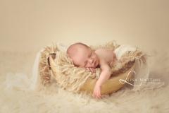 Lisamatthisphotography0338web